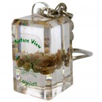 Cannabis seeds keychain, real seeds inside